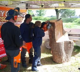 Grebbelinie chainsaw carving workshop